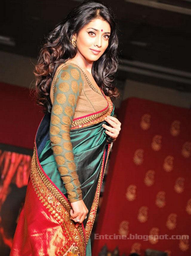 Shriya Saran Saree Stills Shriya Saran Saree Photo Gallery Entcine