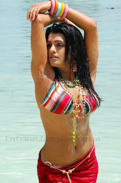 Permalink to Tashu Kaushik Hot Photos